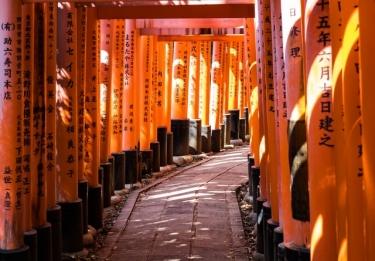 【東京都内】出世にご利益のある神社はどこ?4つの神社を紹介!